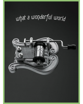 Lyre - What a wonderful world